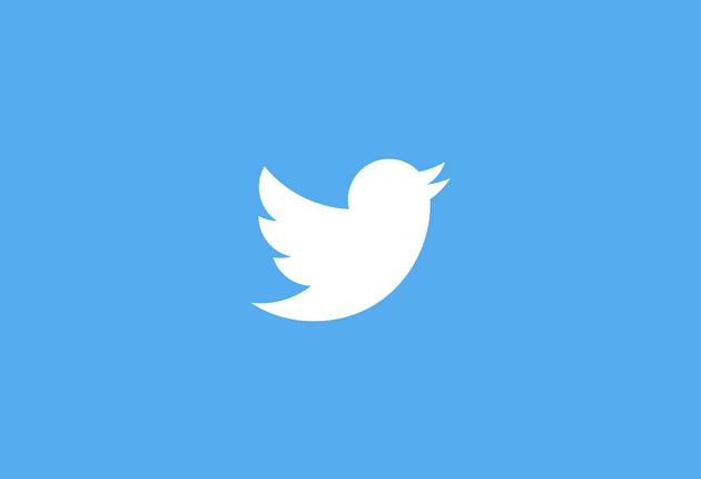 Twitter Logo Website Layout
